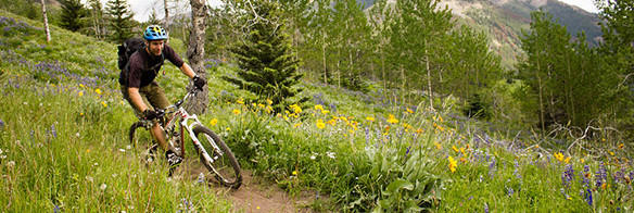 Dave Reid avoiding wildflowers in the Chilcotins