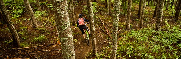 Sea to Sky Enduro mountain bike, Whistler